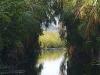 Waterway to Nzulezo