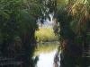 Wasserweg nach Nzulezo
