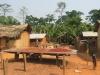Hier trocknen Kakao-Bohnen und Palmkerne