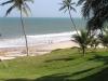 Atlantikwellen und Palmenstrand